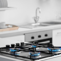 Kitchen propane gas stove