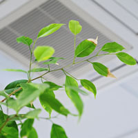 Improving your indoor air quality: 7 tips